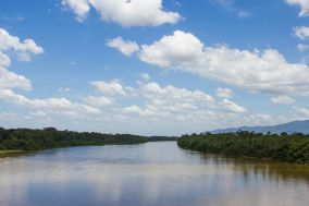 The effect of environmental change on out-migration in the Brazilian Amazon rainforest