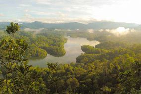 The Amazon forest preservation by clarifying property rights and potential conflicts: how experiments using fit-for-purpose can help